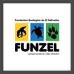 FUNZEL