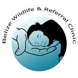 Logo-BWRC